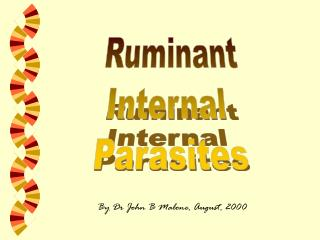 Ruminant Internal  Parasites