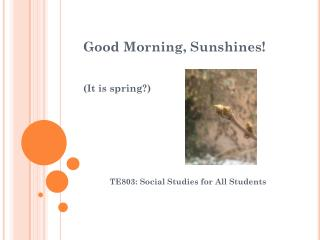Good Morning, Sunshines! (It is spring?)