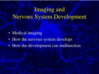 Imaging and  Nervous System Development