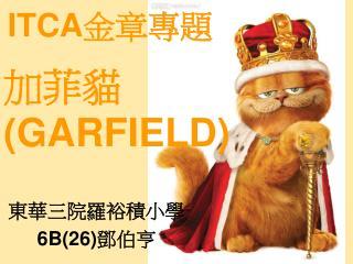 加菲貓 (GARFIELD)