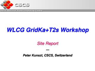 WLCG GridKa+T2s Workshop