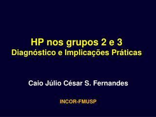 HP nos grupos 2 e 3  Diagnóstico e Implicações Práticas
