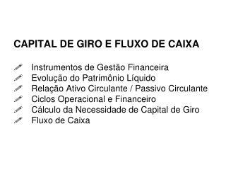 CAPITAL DE GIRO E FLUXO DE CAIXA   Instrumentos de Gest o Financeira  Evolu  o do Patrim nio L quido  Rela  o Ativo Circ