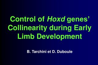 Control of  Hoxd  genes' Collinearity during Early Limb Development B. Tarchini et D. Duboule