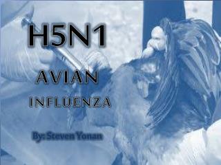 H5N1  AVIAN  INFLUENZA