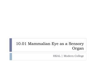 10.01 Mammalian Eye as a Sensory Organ