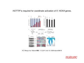 KC Wang  et al.  Nature 000 ,  1 - 5  (2011) doi:10.1038/nature09819