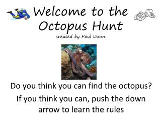 Welcome to the Octopus Hunt created by Paul Dunn