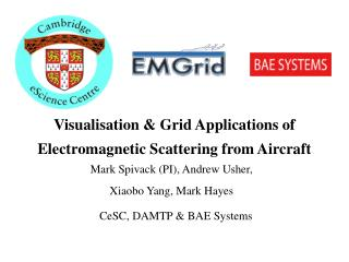 Visualisation & Grid Applications of Electromagnetic Scattering from Aircraft