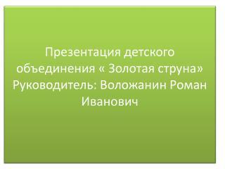 Презентация детского объединения « Золотая струна» Руководитель:  Воложанин  Роман Иванович