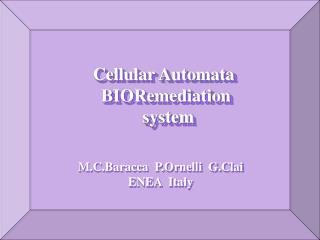 Cellular Automata  BIORemediation   system