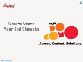 Executive Scheme