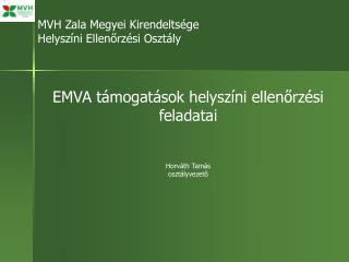 MVH Zala Megyei Kirendeltsége Helyszíni Ellenőrzési Osztály