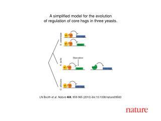 LN Booth  et al. Nature 468 , 959-965 (2010) doi:10.1038/nature09560