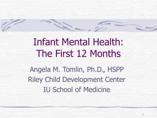 Infant Mental Health: The First 12 Months