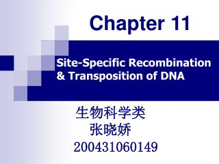 Site-Specific Recombination                    & Transposition of DNA
