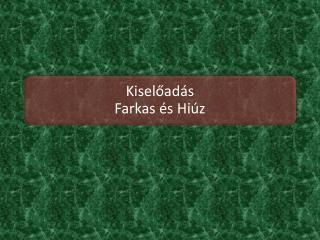 FARKAS (CANIS LUPUS)