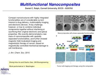 Multifunctional  Nanocomposites