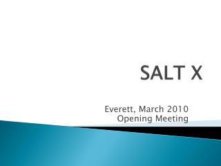 SALT X