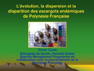 L'évolution, la dispersion et la disparition des escargots endémiques de Polynésie Française