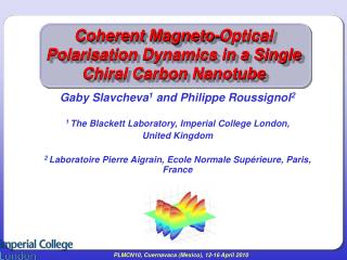 Coherent Magneto-Optical Polarisation Dynamics in a Single Chiral Carbon Nanotube