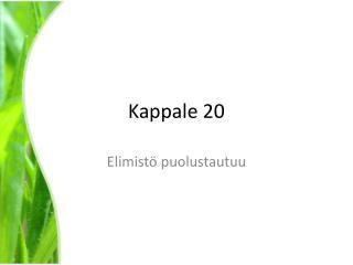 Kappale 20