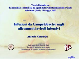 Università degli Studi di Bari Facoltà di Medicina Veterinaria