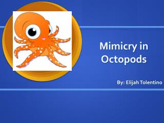 Mimicry in Octopods