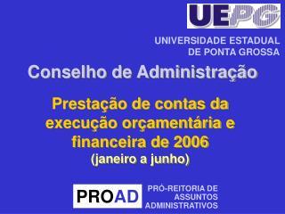 Prestação de contas da  execução orçamentária e financeira de 2006 (janeiro a junho)