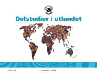 Delstudier i utlandet
