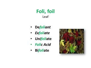 Foli, foil Leaf