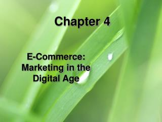 E-Commerce: Marketing in the Digital Age