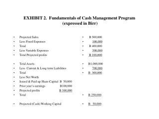 EXHIBIT 2.  Fundamentals of Cash Management Program  (expressed in Birr)