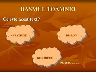 BASMUL TOAMNEI