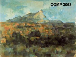 COMP 3063