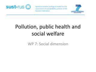 Pollution, public health and social welfare