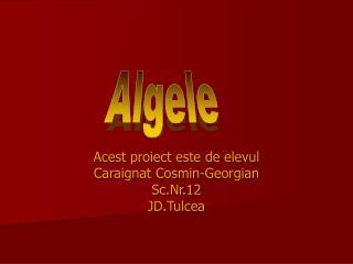 Acest proiect este de elevul  Caraignat Cosmin-Georgian Sc.Nr.12 JD.Tulcea