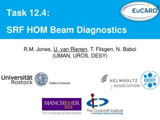 Task 12.4 : SRF  HOM Beam Diagnostics