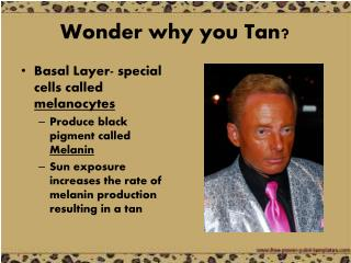 Wonder why you Tan?