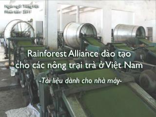 Rainforest Alliance đào tạo  cho các nông trại trà ở Việt Nam