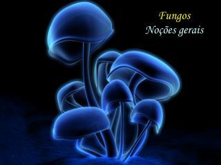 Fungos Noções gerais