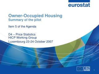 Owner-Occupied Housing Summary of the pilot Item 5 of the Agenda