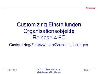 Customizing Einstellungen Organisationsobjekte Release 4.6C