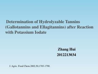 Zhang Hui 2012213034