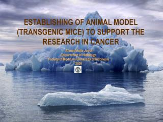 ESTABLISHING OF ANIMAL MODEL (TRANSGENIC MICE) TO SUPPORT THE RESEARCH IN CANCER