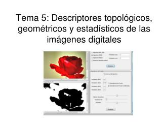 Tema 5: Descriptores topológicos, geométricos y estadísticos de las imágenes digitales