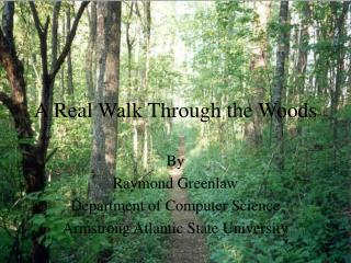 A Real Walk Through the Woods