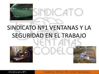 SINDICATO  Nº1  VENTANAS  Y LA SEGURIDAD EN EL TRABAJO