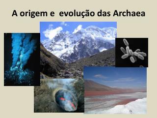 A origem e  evolução das Archaea
