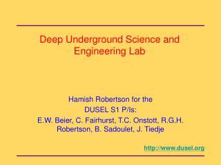 Deep Underground Science and Engineering Lab